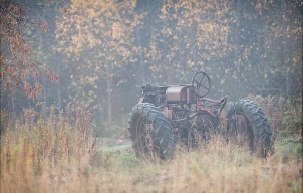 Picture autumn, nature, fog, tractor