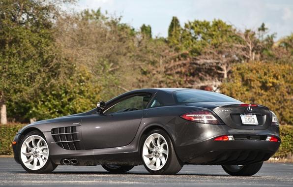 Picture grey, supercar, mercedes-benz, Mercedes, rear view, the bushes, mclaren, McLaren, CPR, slr