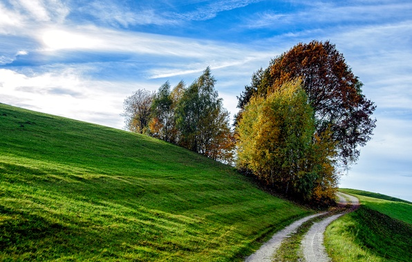 Picture road, autumn, the sky, grass, trees, slope, hill