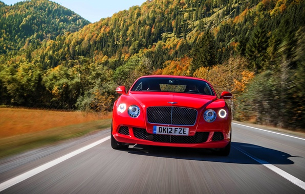 Picture Red, Bentley, Continental, Road, Trees, Forest, Machine, The hood, Lights, Room, The front