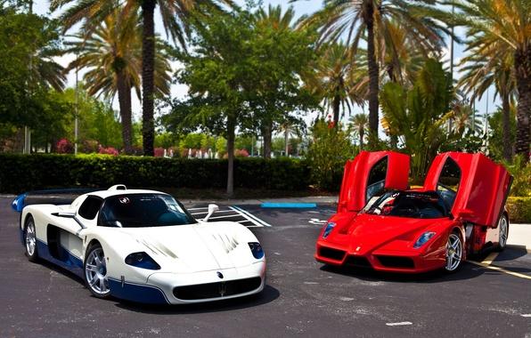 Picture white, red, palm trees, Parking, red, white, ferrari, Ferrari, enzo, Maserati, parking, Enzo, macerati, эмси12, …