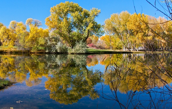 Picture autumn, the sky, trees, lake, pond, Park, reflection