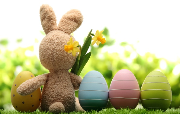 Picture grass, flowers, nature, holiday, toy, hare, eggs, spring, Easter, daffodils, Easter