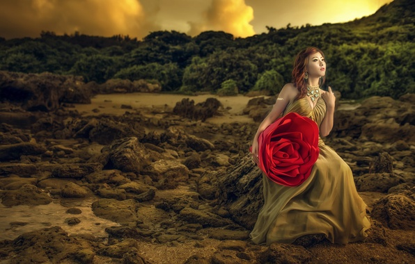 Picture flower, girl, nature, model, rose, dress, Asian