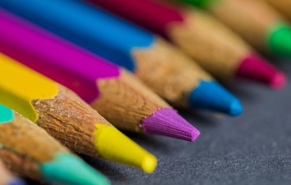 Picture macro, background, color, pencil