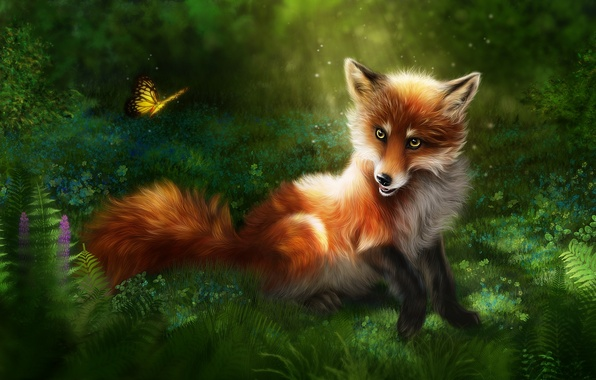 Picture grass, nature, rendering, butterfly, Fox, red, Fox