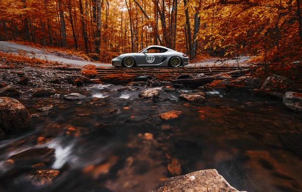 Picture Porsche, Cayman, Orange, Side, View, Stance, Forest, Works