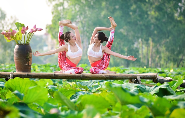 Picture summer, nature, girls, mood, gymnastics, yoga, legs, Asian girls