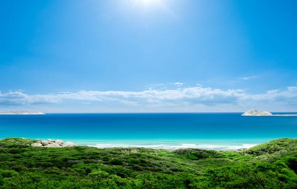 Picture sea, the sky, the sun, landscape