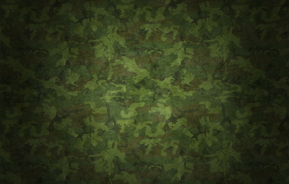 Picture surface, texture, texture, 2560 x 1600, Camouflage