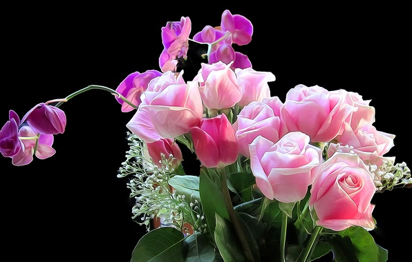 Picture flowers, background, rose, bouquet, iris
