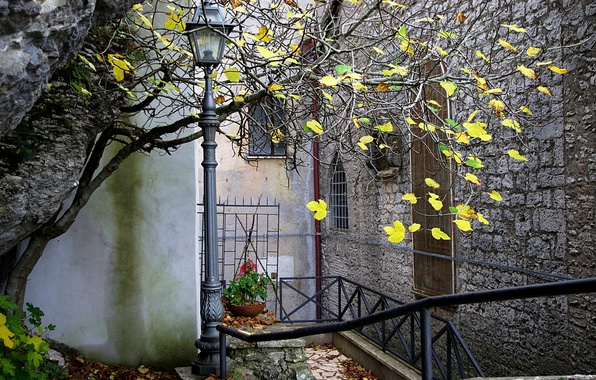 Picture autumn, the city, house, tree, lantern, patio