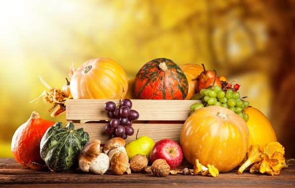 Picture autumn, apples, mushrooms, harvest, grapes, pumpkin, fruit, nuts, box, vegetables