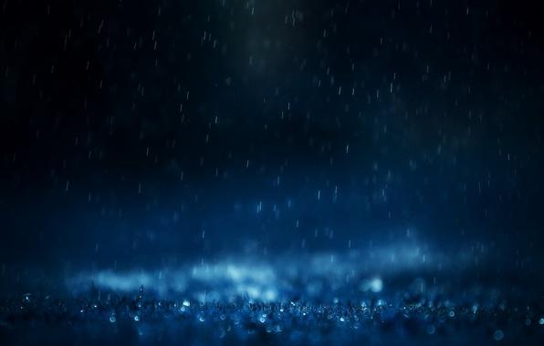 Picture grass, water, drops, macro, squirt, rain, mood, mood, drop, rains
