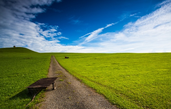 Picture road, greens, field, the sky, car