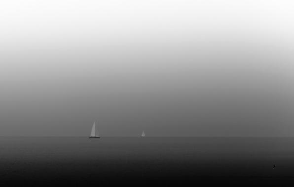 Picture sea, night, boats