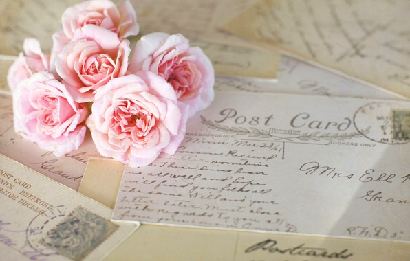 Picture flowers, roses, pink, vintage, letters, cards