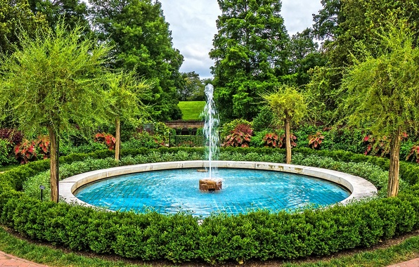 Picture trees, nature, Park, photo, fountain, USA, the bushes, Longwood Kennett Square