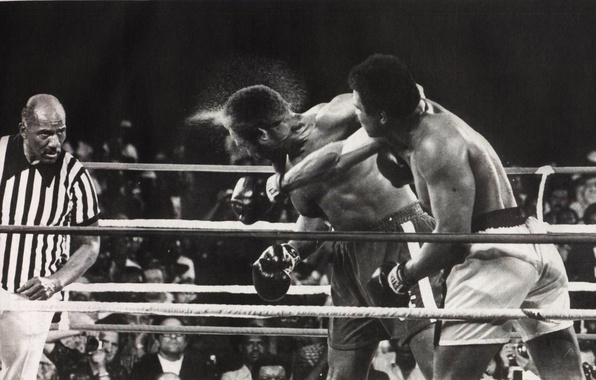 Picture Sport, Boxing, blow, Muhammad Ali, the fight