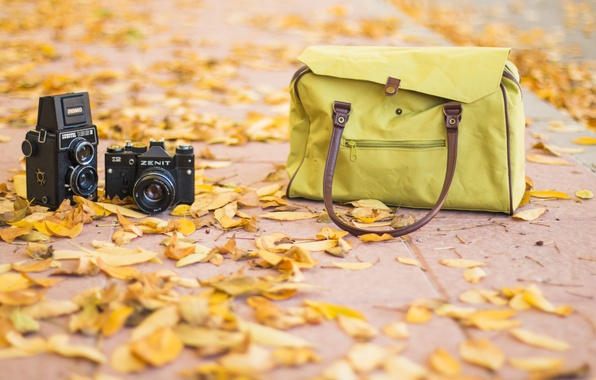 Picture fashion, vintage, road, photography, bag, autum