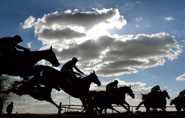 Picture horse, rider, jump, jockey, Racecourse