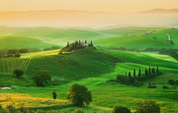 Picture trees, house, field, spring, morning, Italy, May, estate, Tuscany