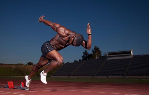 Picture start, muscle, runner, stadium, athlete, biceps