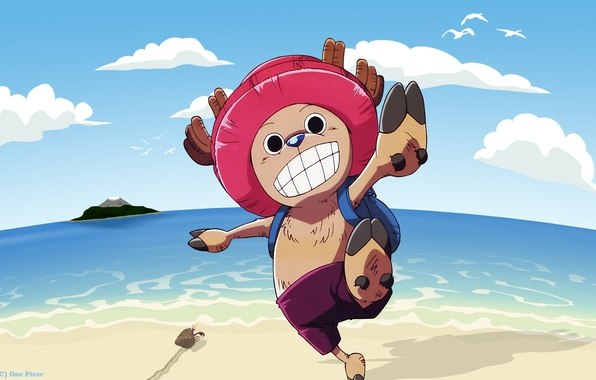 Picture one piece, chopper, one piece, reindeer