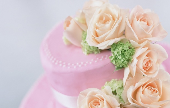 Picture flowers, pink, roses, petals, beautiful, tape, hat