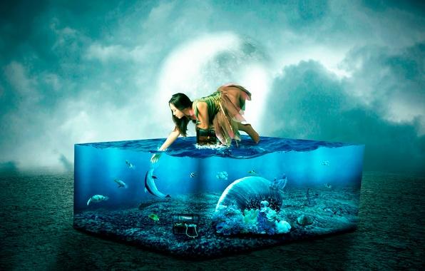 Picture girl, fish, aquarium