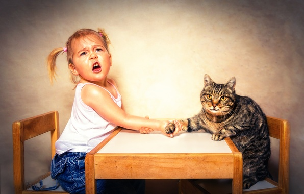 Picture cat, girl, Arm Wrestling