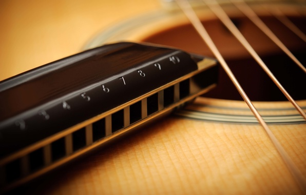 Picture guitar, strings, harmonica, acoustics, macro.