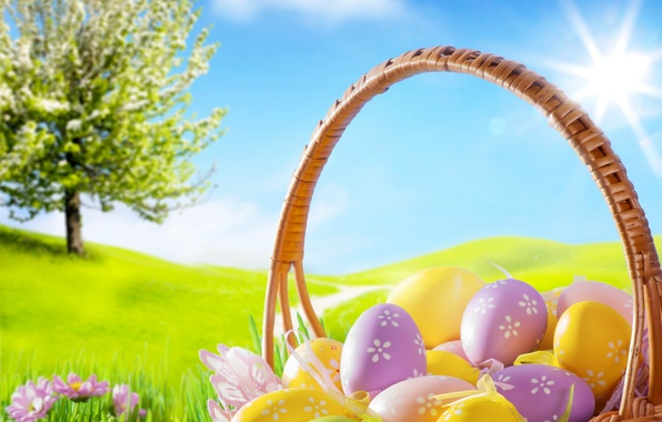 Picture grass, flowers, chamomile, eggs, spring, Easter, grass, sunshine, flowers, spring, blue sky, eggs, easter, basket, …