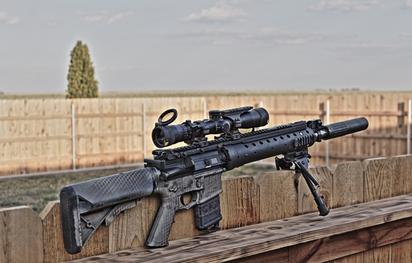 Picture weapons, rifle, sniper, SPR, MK12