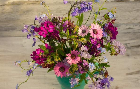Picture bouquet, bells, forget-me-nots, cornflowers, geranium, osteospermum, honesty