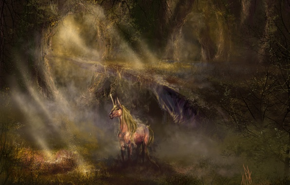 Picture forest, light, horse, thicket, fantasy, art, unicorn