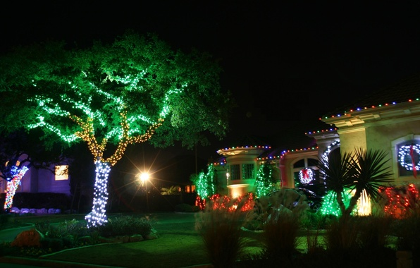Picture decoration, trees, night, lights, lights, house, green, red, house, white, christmas, cottage, trees, landscape, night, …