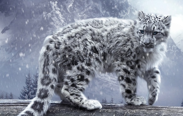 Picture cat, snow, mountains, leopard, IRBIS, log, bars