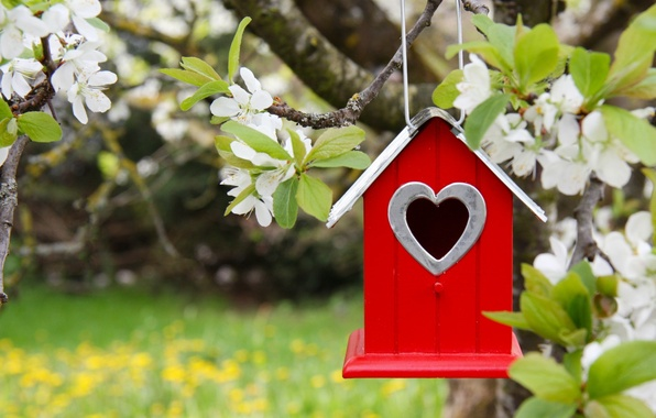 Photo wallpaper Spring, house, birdhouse, flowering