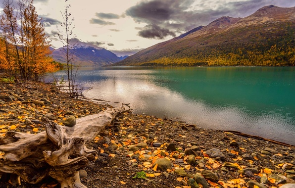 Picture autumn, forest, the sky, leaves, water, clouds, trees, mountains, nature, Park, river, colors, colorful, forest, …