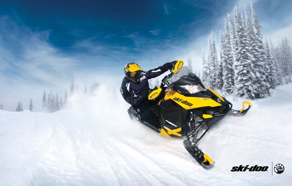 Wallpaper forest, snow, yellow, sport, sport, snow ...