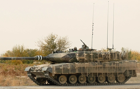 Picture grass, protection, tank, leopard 2a6