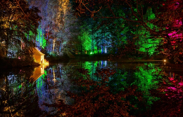 Picture trees, night, lights, pond, Park, house