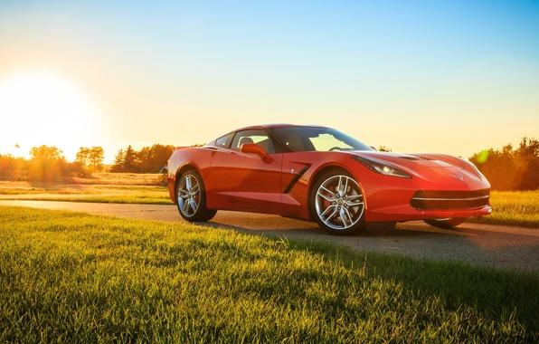 Picture car, red, car, Chevrolet Corvette, Corvette, Stingray