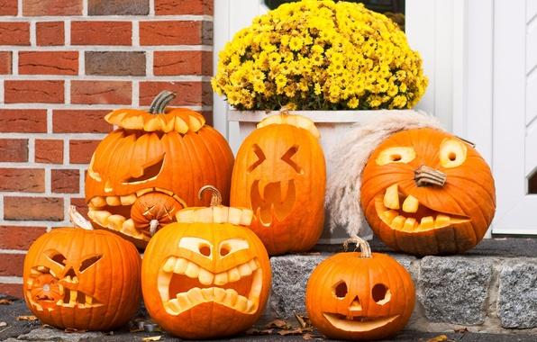 Picture holiday, pumpkin, Halloween, gang, Halloween