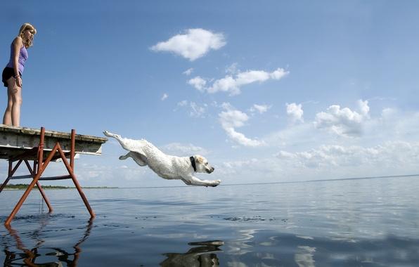 Picture GIRL, WATER, WHITE, HORIZON, The SKY, FLIGHT, JUMP, PIERCE, DOG