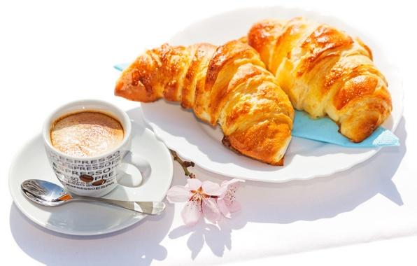 Picture coffee, Breakfast, cakes, cup, coffee, croissants, growing, breakfast
