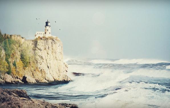 Picture sea, wave, the sky, foam, water, light, squirt, birds, rock, glare, stones, the ocean, rocks, …