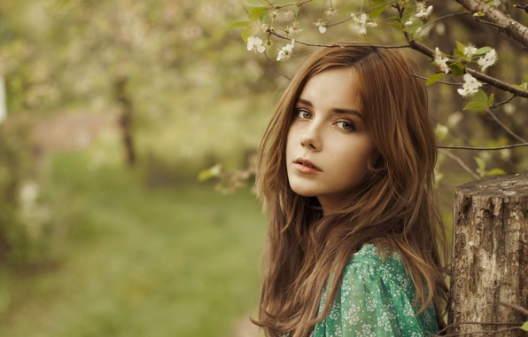 Picture look, girl, flowers, nature, face, background, mood, woman, calm, blur, girl, brown hair, flowers, widescreen, …
