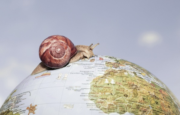 Picture background, snail, globe